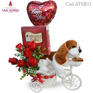 Bici Beagle - Rosas Artificiales