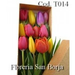 Caja con 15 Tulipanes