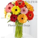 Colorful 15 Gerbera Arrangement