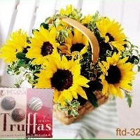 Canasta Sunflower + Truffas de Chocolate