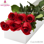 White Box with 6 roses Premium