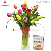 10 tulips in glass vase + tejas helena