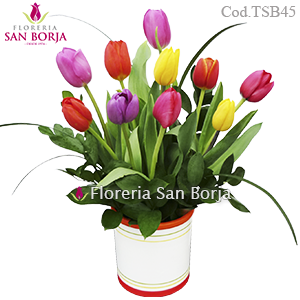 Modelo Tulips for you - 10 tulipanes