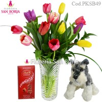 Pack: Florero 12 tulipanes + schnauzer chico + chocolate lindt 100g
