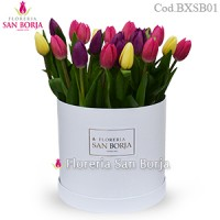 Box con 20 tulipanes