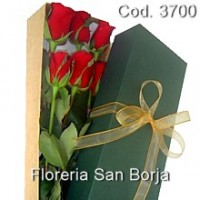 Premium Special Box with 6 imported roses