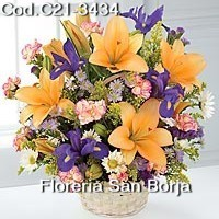 send a beautiful flowers to Piura, florists in Piura, flower stores in Piura