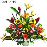 big mixed flower colorful arrangement, birthday flowers to Piura, delivery of bday flowers to Piura, flowers for a birthday in Piura
